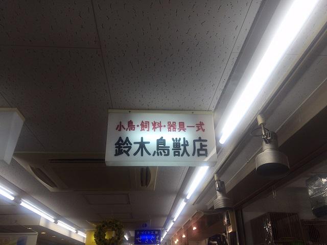 鈴木屋鳥獣店