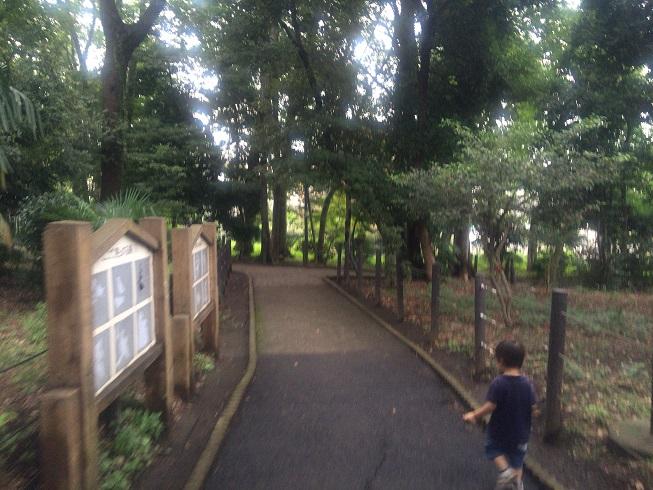 走る2歳児