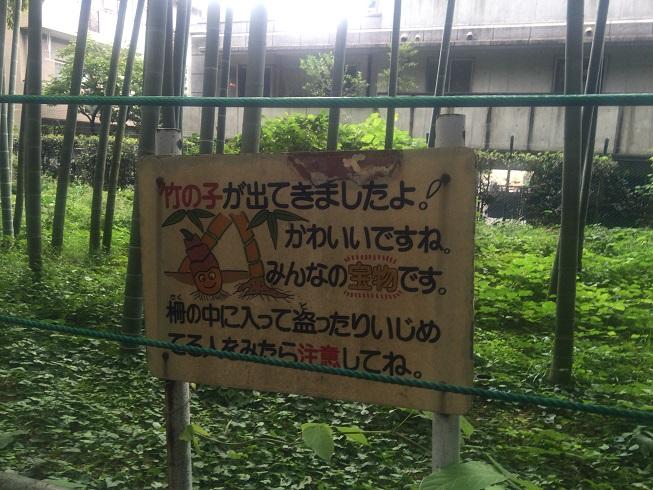 タケノコ収穫禁止の札