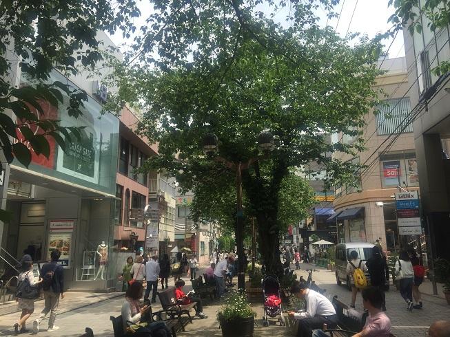 マリ・クレール通り周辺緑道で優雅な一時を過ごす人たち