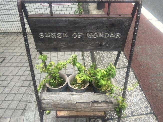 『SENSE OF WONDER』の看板