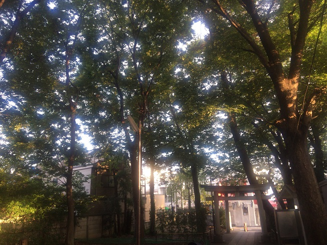 熊野神社敷地内