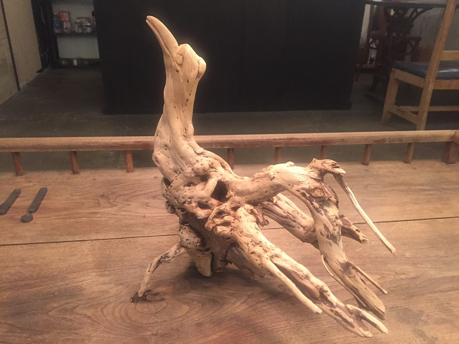 木の根っこを鳥にみたてたオブジェ
