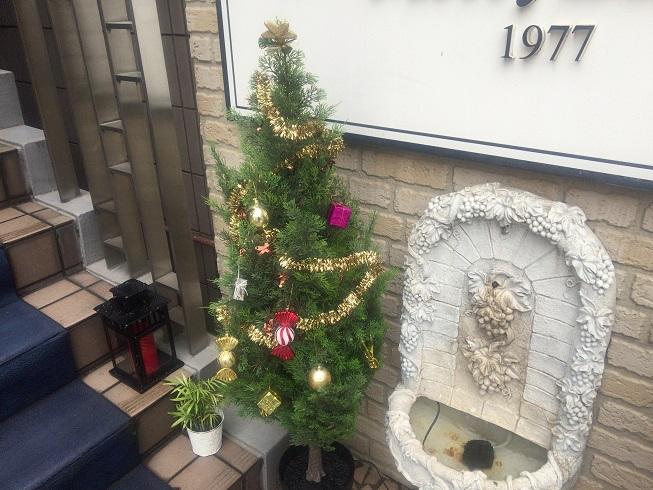 ズーフォニック横のクリスマスツリー