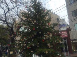 自由が丘マリクレール通り周辺緑道にある恒例のクリスマスツリー