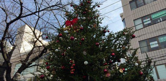 マリクレール通り緑道にあるクリスマスツリー2016