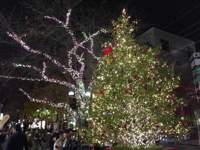 イルミネーションがキレイな自由が丘南口緑道にあるクリスマスツリー