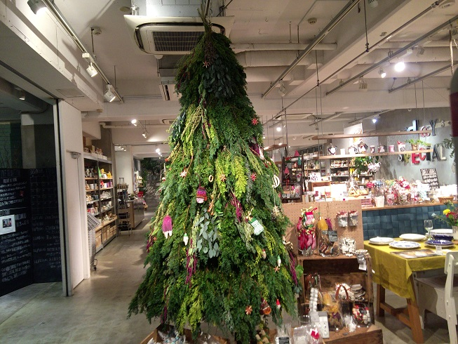 トゥデイズスペシャルのクリスマスツリー