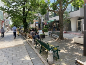 休日の晴れたマリクレール通り周辺緑道の様子